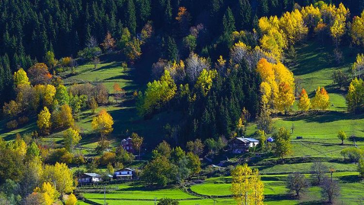 Borçka Haberleri: Karagölde sonbahar güzelliği 71
